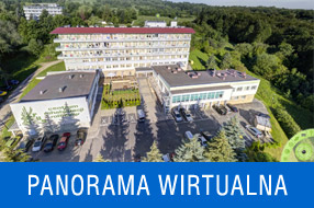 Panorama wirtualna